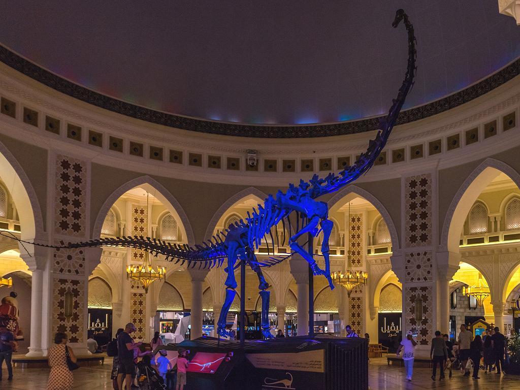 Dinosaurier Skelett Dubai Dino