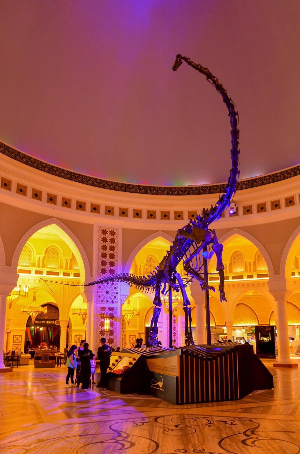 Dubai Dino Skelett