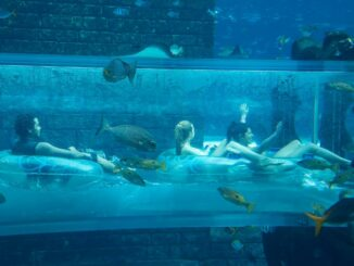 Aquaventure Dubai Röhrentunnel