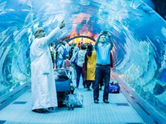 Dubai Aquarium Glastunnel