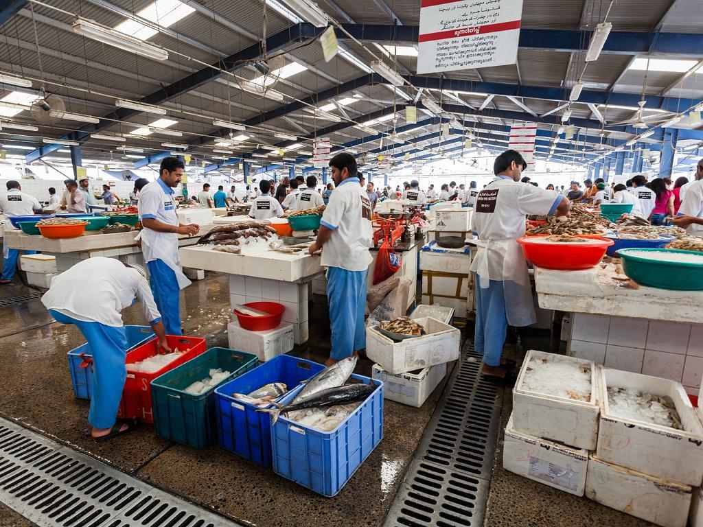 Dubai Fischmarkt