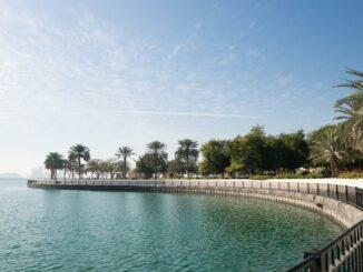 Der Al Mamzar Park in Dubai mit Palmen